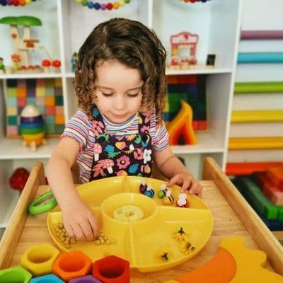 Paint and Sorting Trays,Assorted Colours Flower Sorting and Paint Trays