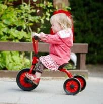 Winther Mini Viking Low Tricycle